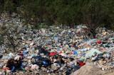 Belediye, ormanı çöp yığınına çevirdi!