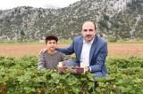 Konya Büyükşehir Belediye Başkanı Altay: İnsanımız üretecek biz destek olacağız
