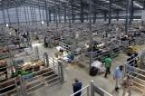 Erzurum modern tesisiyle 'hayvancılık merkezi' olma yolunda