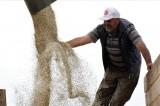 Gümüşhane'de 30 yıldır işlenmeyen araziler aspirle ekonomiye kazandırıldı
