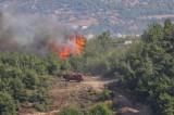 Hatay'daki orman yangınları kontrol altına alındı