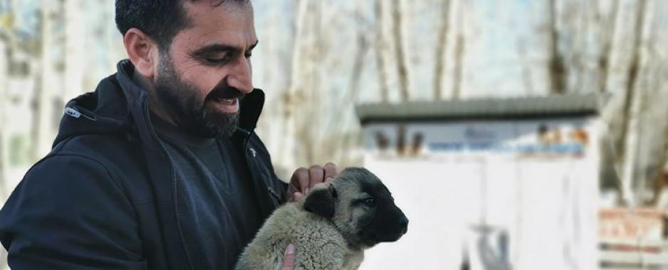 Ovacık Belediye Başkanı, sokak hayvanları için makam ve belediye araçlarını sattı