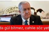 MHP Genel Başkan Yardımcısı Sadir Durmaz: Çalıda gül bitmez, cahile söz yetmez